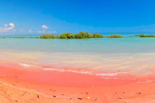 Roebuck Bay King Tide Colours