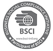 bsci.png