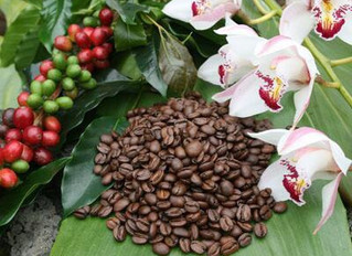 Kona Blend July Coffee Flavor of the Month