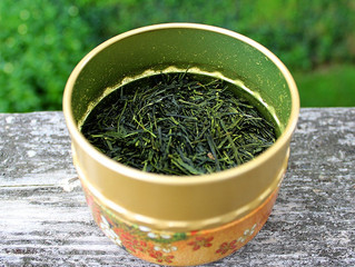 Japan Sencha Green Tea is October's Tea of the Month