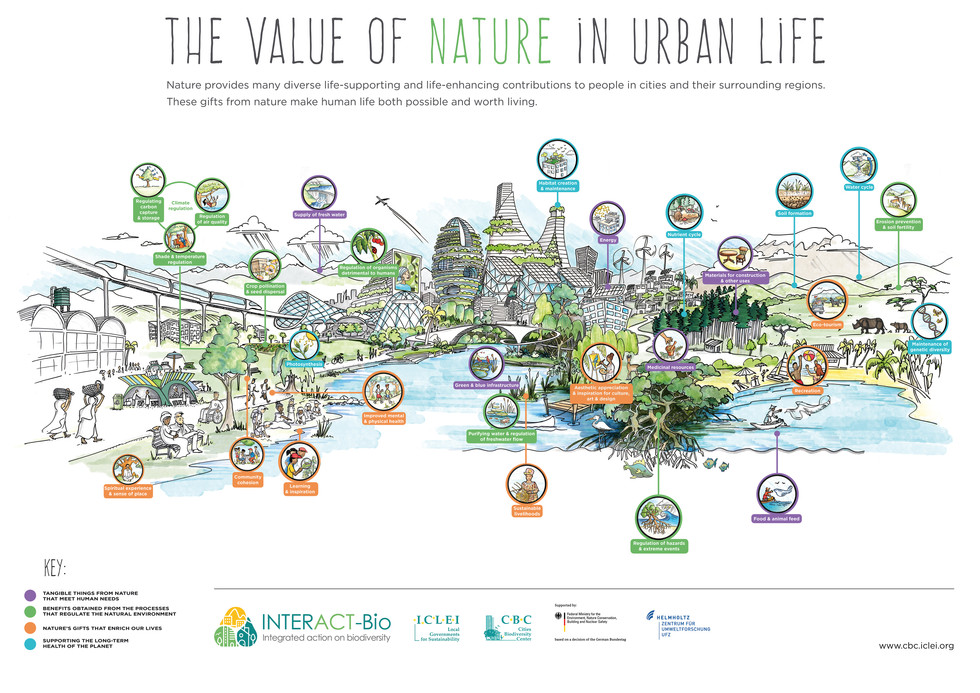 InteractBio -The Value of Nature Poster