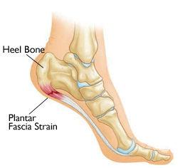 Knee Sports Injury Specialist