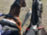 Free Ride Neck Strap