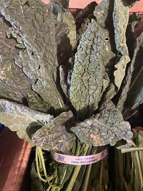 Tuscan Kale-bunch