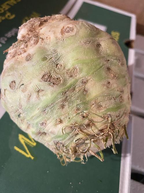 Celery Root -each