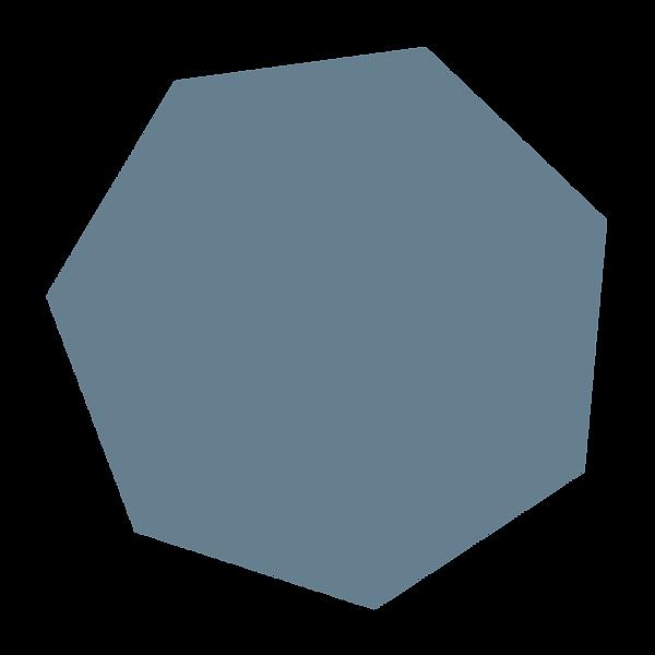 NIEMAND_7_ECK_BLAU_3000.png