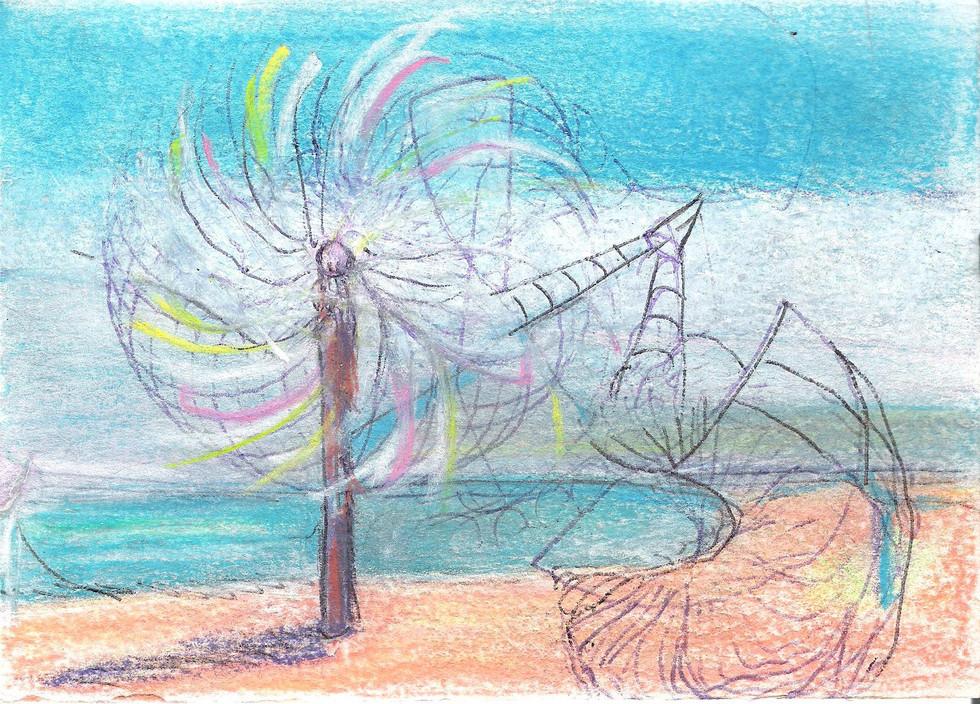 Coquillages / étude au moulin à vent