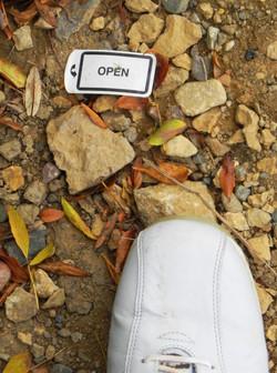 Open pietra data