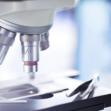 Light Microscopes & Accessories