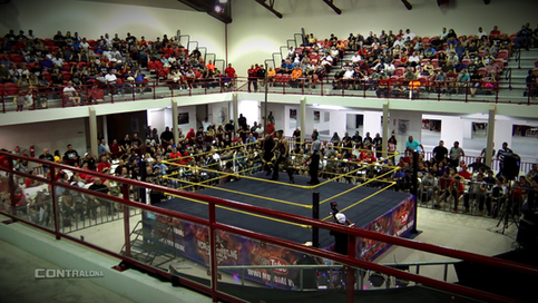 ÚLTIMA HORA: Secretaria del DRD aprueba regreso de los deportes de contacto físico en la isla
