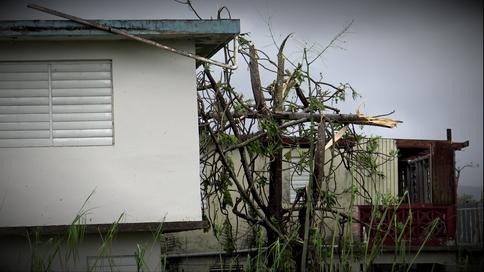 Luego del paso del huracán María por Puerto Rico...