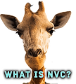 What is NVC?