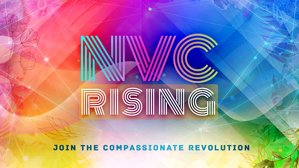 NVC Rising homepage new.jpg