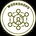 Festival workshops