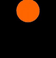 C2C Black Orange