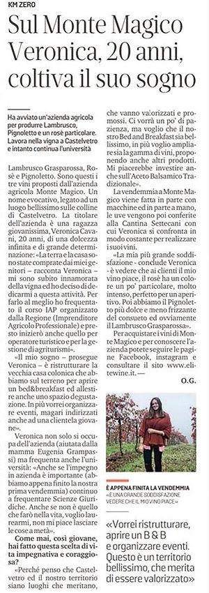 Gazzetta di Modena Articolo giusto.jpg