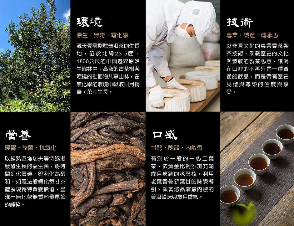藏天茶-說明書-25.jpg