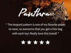 Review Panthra