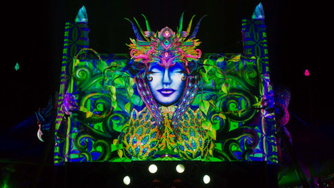 DANIEL POPPER / BOOM VENUS / BOOM FESTIVAL 2014 : PORTUGAL