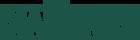 Logo_Dia_news_Nova_2016_60pxaltura_verde1.png