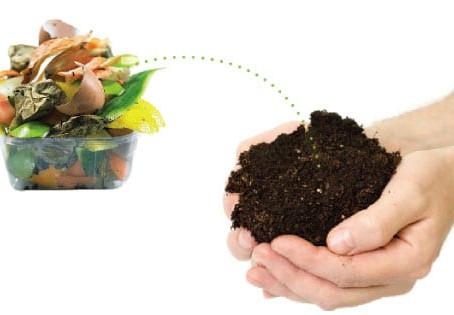 Você sabe o que podemos compostar?