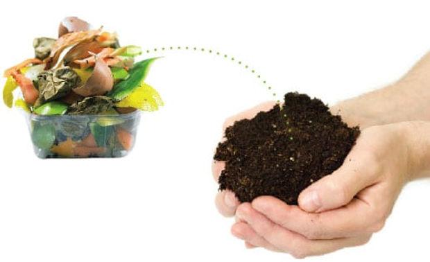 compostagem.jpg