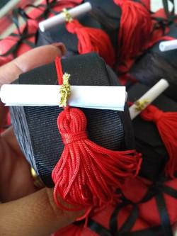 Bem-formado com pngente e diploma