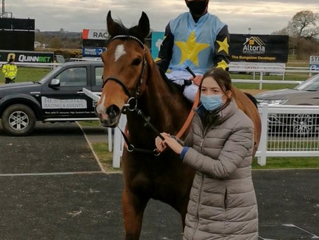 Lion Tower wins at Newcastle