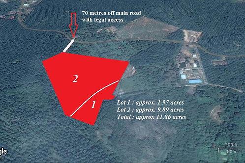 Freehold 11.86 Acre Palm Oil Land @ Kuala Sungai Baru Melaka