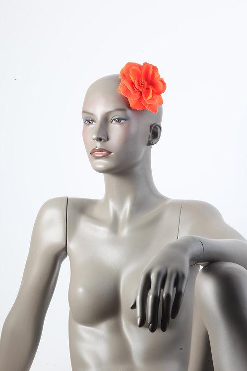 Accessoires de têtes & divers-23