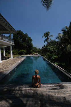 Infinity Pool View Nature Jungle Exp