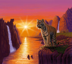 Tiger in the sunset
