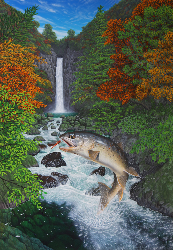 渓流に棲むイワナ