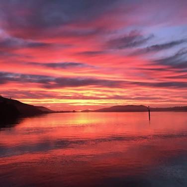 Otago Daybreak