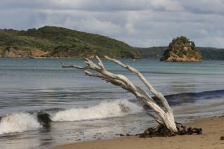 Ringaringa Beach