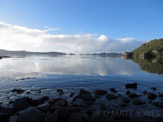 Paterson Inlet from West End Beach