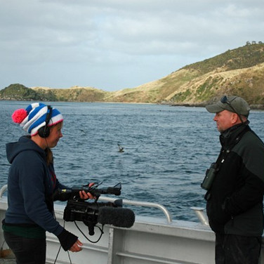 Working with the BBC filming Sooty Shearwaters
