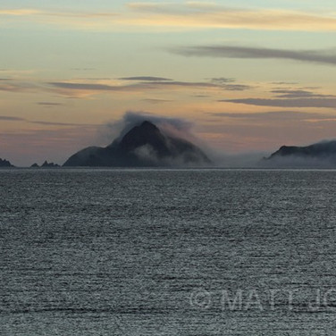Whenua Hou (Codfish Island) Sunrise