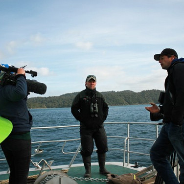 A break in filming Sooty Shearwaters with the BBC
