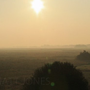Morning Breaks in Biebrza Marshes