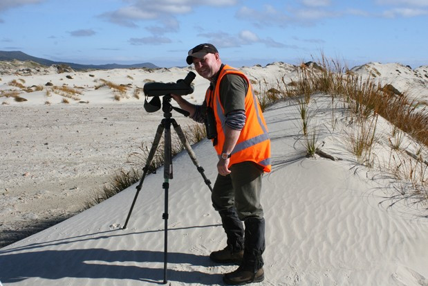 Join the Dotts! Me, counting the very rare Southern NZ Dotterels at Mason Bay, Stewart Island NZ, 2013
