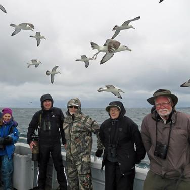 Stewart Island pelagic
