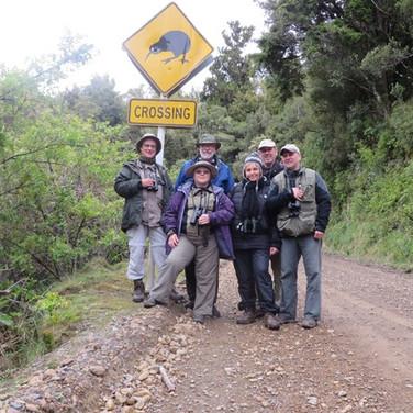 Wrybill NZ Tour 2014