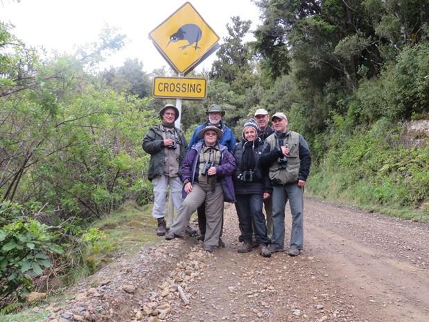 Wrybill Birding Tour 2014
