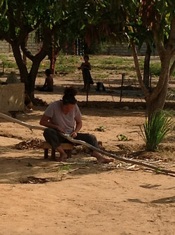 charlotte ecorce l'eucalyptus