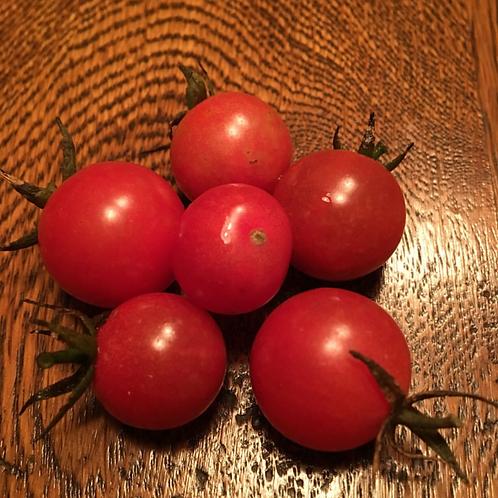 TOMATO Two Tone Cherry Red