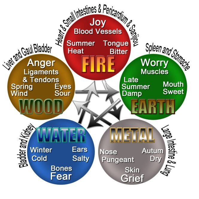 This picture was taken out of my Pinterest account and depicts the 5 Elements which describe each season and its associated organs, emotions and part of the body. Liver and Gallbladder as you can see, are on the far left corner at the level of 10-11 o' clock. I don't have the info on who to credit this image upload to so please let me know if you know!! Thanks!!