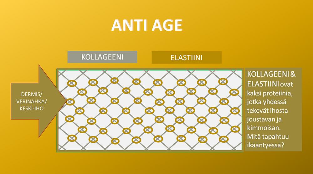 Aikuisen naisen ihossa ei ole enää niin paljon kollageenia ja elastiinia.