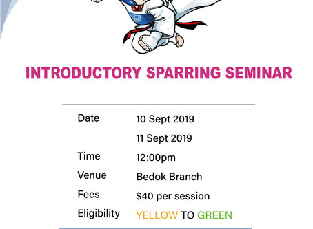 September Bedok Introductory Sparring Seminar