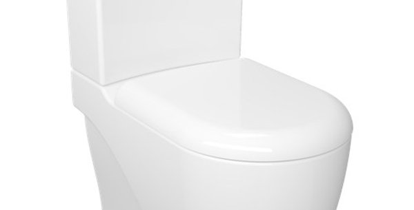 GR360 Grande XXL Back to Wall Pan Combined Bidet